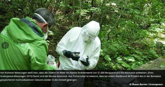 Greenpeace Messungen in Fukushima 2015